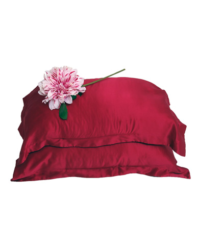 Pair of Luxury Silk Oxford Pillow Cases